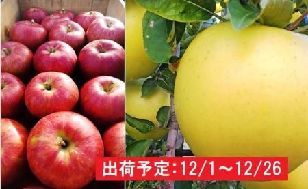 12月 吹田りんご園  山の完熟サンふじ・シナノゴールド合計約3kg(詰合せ)津軽広船産