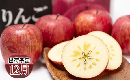 年内 蜜入り 糖度保証サンふじ約5kg 青森県平川市産