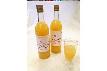 【2623-0057】ホテルグランメール山海荘オリジナルリンゴジュース2本セット