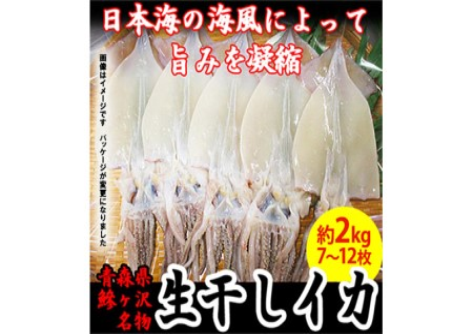 青森県産一本釣りイカ使用 鰺ヶ沢名物 天日生干しイカセット(2Kg以上7枚~12枚入り)※ ご入金確認後 3ヶ月以内の発送になります。 青森 イカ いか 国産 魚介