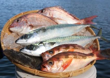 大漁まるごと海鮮セット F-1
