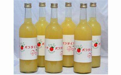 りんごジュース(ストレート)【紅玉入り】720ml×6本 【藤原農園】
