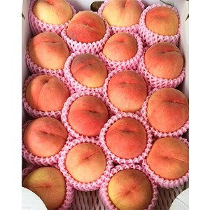 ももやの「桃」5kg(18個入り)1箱品
