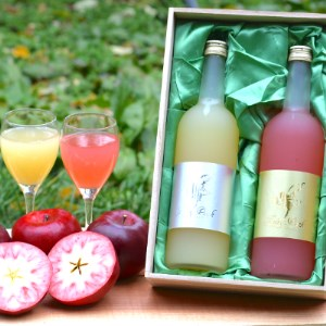 【Fairy Pink】青森県産紅の夢使用 フェアリーピンク金&銀ラベルギフト〈木箱入り〉12月発送【1218411】