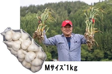 丸美農園の田子産にんにくMサイズ約1kg