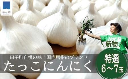 8月 令和3年産 新物 日本一田子にんにく・特選6~7玉