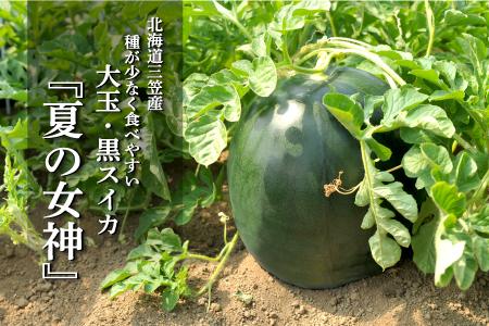 《令和3年分》《大玉》夏の女神(黒皮スイカ)1玉入(6~8kg)【01061】