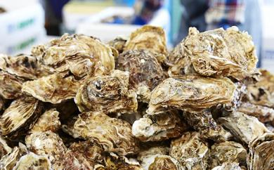大和田家の殻付き牡蠣