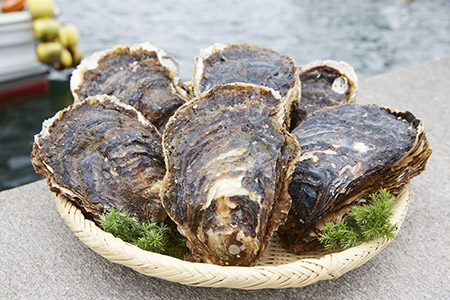 RT371  かき小屋広田湾の岩牡蠣【順次発送】