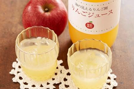 RT652 海の見えるりんご園・極甘りんごジュース天然100%×2本