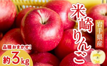 RT670 ご家庭用米崎りんご品種おまかせ3㎏【11~12月発送】