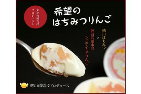 RT740 名古屋×陸前高田 希望のはちみつりんごアイス