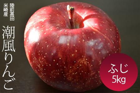 RT433-潮風りんご 陸前高田の潮風が育てた「潮風りんご」ふじ5㎏【11月下旬から順次発送】