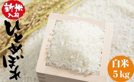 RT541 【平成30年度新米】海の見える農園で作った白米5㎏