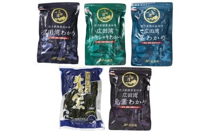 RT825 広田湾漁協からお届け!わかめセット【期日指定不可】
