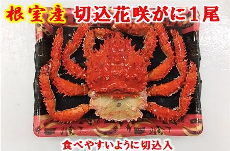 【北海道根室産】花咲がに姿(切込入り)500g×1尾 A-01018