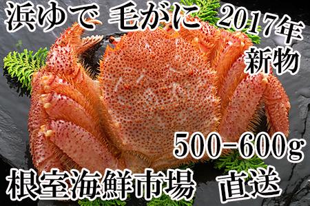 FA-14002 浜ゆで毛がに500~600g×1尾 根室海鮮市場[直送]