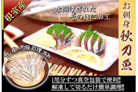 FA-24006 北海道根室産 お刺身さんま