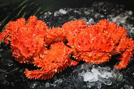 FA-20001 根室海峡 浜茹で花咲がに2尾セット(オス・メス)