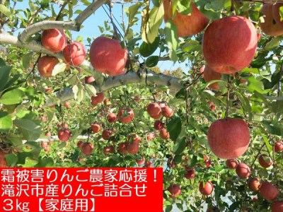 A-243【霜被害りんご農家応援!】 滝沢市産りんご詰合せ 3kg 【家庭用】