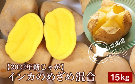 北海道千歳産じゃがいも【インカのめざめ】約15kg 【野菜・じゃがいも】 お届け:2020年9月上旬より順次出荷