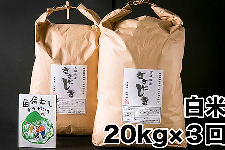 D05011 【定期配送】田伝むしのササニシキ白米20kgx3回(栽培期間中農薬・化学肥料不使用)