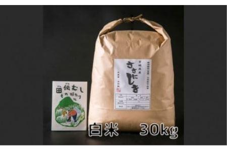 新米 令和3年産 田伝むしのササニシキ白米30kg(農薬:栽培期間中不使用)