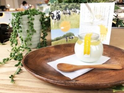 岩瀬牧場 ミルクが惹き立つ6種のプリンセット