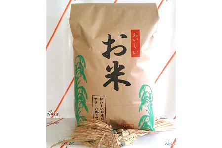 A023 宮城県多賀城産米10kg