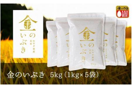 【令和2年産】金のいぶき 玄米 5kg(1kg×5袋)