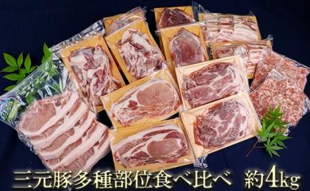 涌谷町産三元豚多種部位食べ比べセット 約4kg