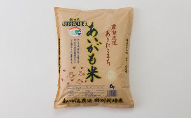 30P3006  【新米予約】秋田県特別栽培米あきたこまち「あいがも米」5kg【30P】