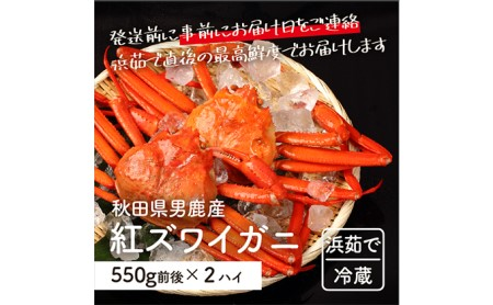 男鹿沖産紅ズワイガニ550g前後×2匹【男鹿なび】