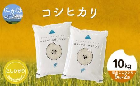 令和3年 新米 秋田県産コシヒカリ10kg(5kg×2袋 精米 こしひかり )