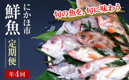 開けたらすぐ食べられる日本海の鮮魚定期便(2~3人前・年4回)(魚介 下処理済み 詰合せ 詰め合わせ セット)