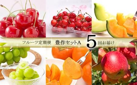 FY19-613【令和2年産先行予約】定期便5回 フルーツ定期便 豊作セットA