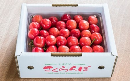 FY19-633【令和2年産先行予約】さくらんぼ(紅秀峰)秀L 500g バラ詰め
