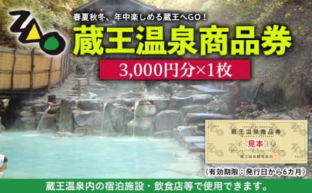 FY19-529 蔵王温泉商品券(3000×1枚)