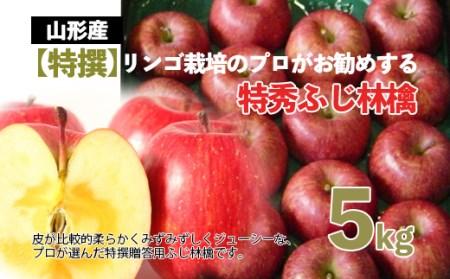 FY20-551 【特撰】りんご栽培のプロがお勧めする 特秀 ふじりんご 5kg