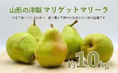FS20-575 【令和3年産先行予約】山形の洋梨マリゲットマリーラ 約10kg(14~30玉)5kg×2箱