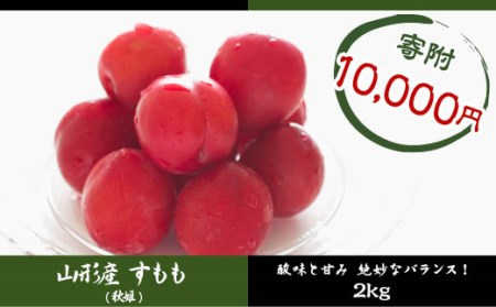 FY18-424 山形産 すもも (秋姫) 約2kg