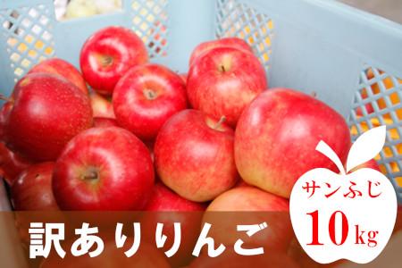 【先行受付】訳ありふぞろいりんご_R2年産_10kg_11月中旬頃からお届け|029R2-011