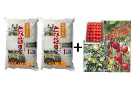 AB-14 減農薬減化学肥料栽培米(コシヒカリ・つや姫)&季節の果物