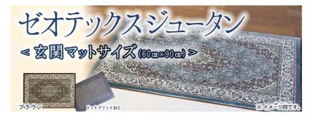 041-034-01 ゼオテックスジュータン玄関マットサイズ(ブラウン)