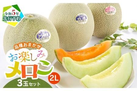 A01-601 鶴岡メロン三昧(アンデスメロン・鶴姫メロン・鶴姫レッドメロン)2Lサイズ(約1kg)各1玉(合計3玉・3kg)