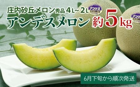 A01-602 アンデスメロン(青肉) 秀品3L~2L 約5㎏(4玉~5玉)