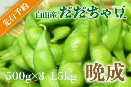 A01-645 【令和3年分先行予約】鶴岡特産 白山産だだちゃ豆(晩成) 2kg(500g×4袋) 枝豆