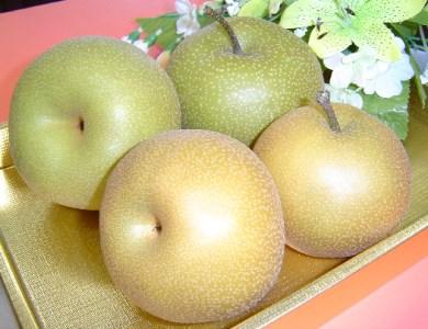A21-002 和梨(幸水5kg)鶴岡産フルーツ・果物