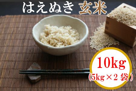 A02-008 【令和2年産】【玄米】 山形県鶴岡産はえぬき 玄米 10kg(5kg×2袋)