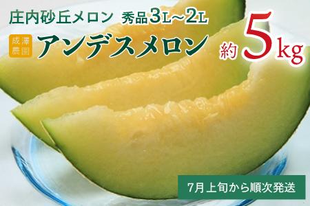 A03-603 成澤農園 鶴岡産庄内砂丘メロン 秀逸品 アンデス(4~5玉)